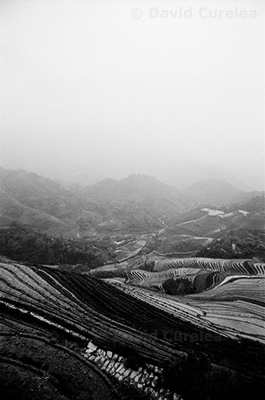 Valley of Unfolding Terraces by David Curelea